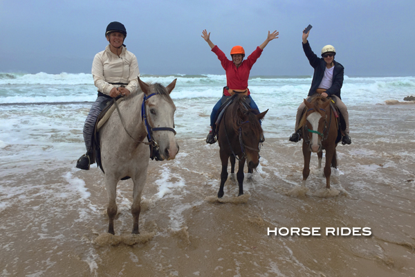 Corporate Group Horse Riding