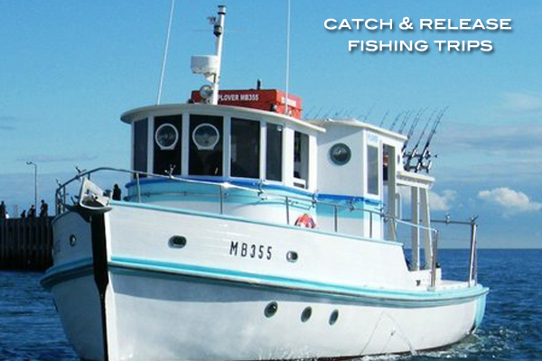Catch and Release Fishing tours Mornington